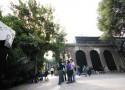 patio arcos 61