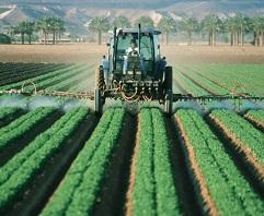 Charla Agriculturas empresariales y sus espacios rurales y urbanos. Casos latino-americanos