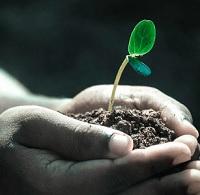 """Ciclo de encuentros con científicos """"Sustentabilidad y Desarrollo Sustentable: ¿Venta de pomada o una necesidad?"""""""