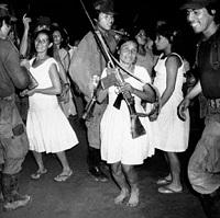 La mujer guerrillera en el Perú: Literatura, testimonio, archivo