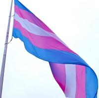 """Foro """"Visibilizando realidades trans: ¿Cómo responde el Estado?"""""""