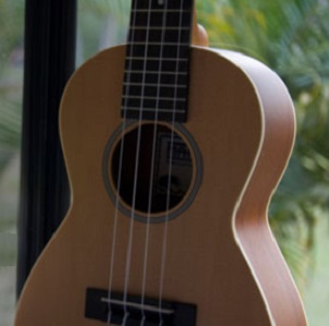 """Tercera sesión Ciclo «Conversaciones sobre poesía y música""""."""